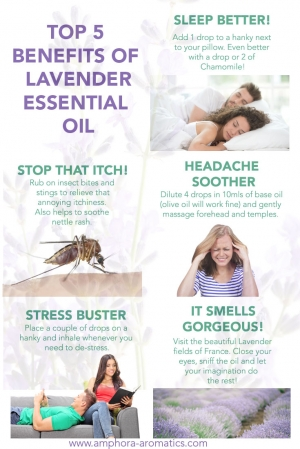 Top 5 Benefits of Lavender Essential Oil