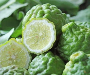 Daylight Saving Oils - Bergamot