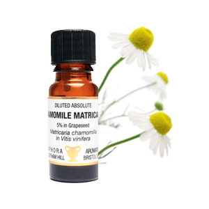 Chamomile Matricaria Abs Diluted (5%) 10ml