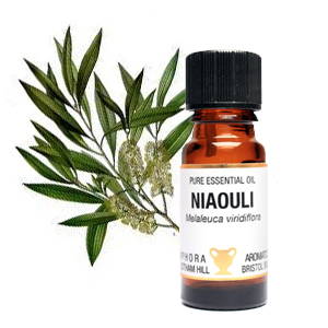 Niaouli Essential Oil 10mls
