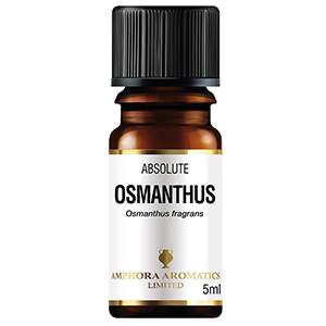 Osmanthus Absolute 5mls